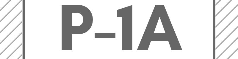 P-1A Non-Immigrant Visa